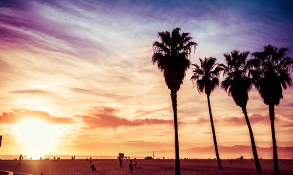 how to start small business in california - california sunset
