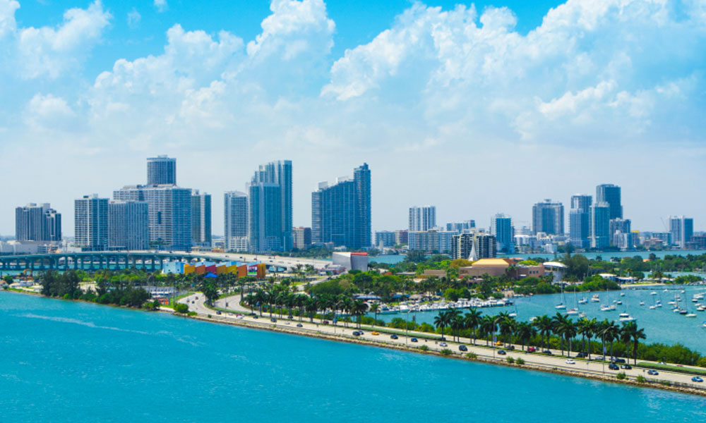 start a small business in Florida - Miami Skyline