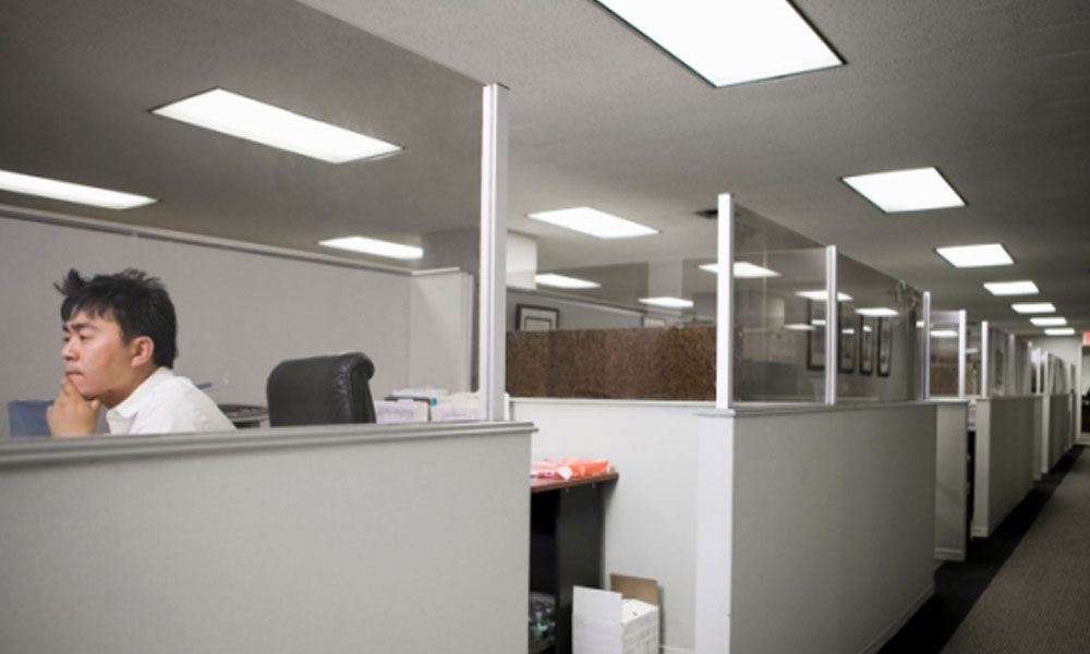 survey results what americans want at work -  man sitting in a row of cubes