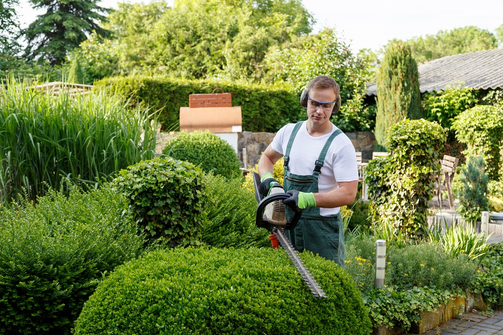 household w2 - gardener trimming bushes